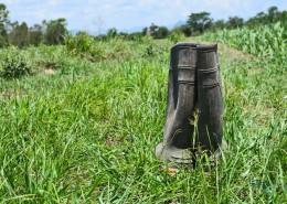 Scarpe e Stivali