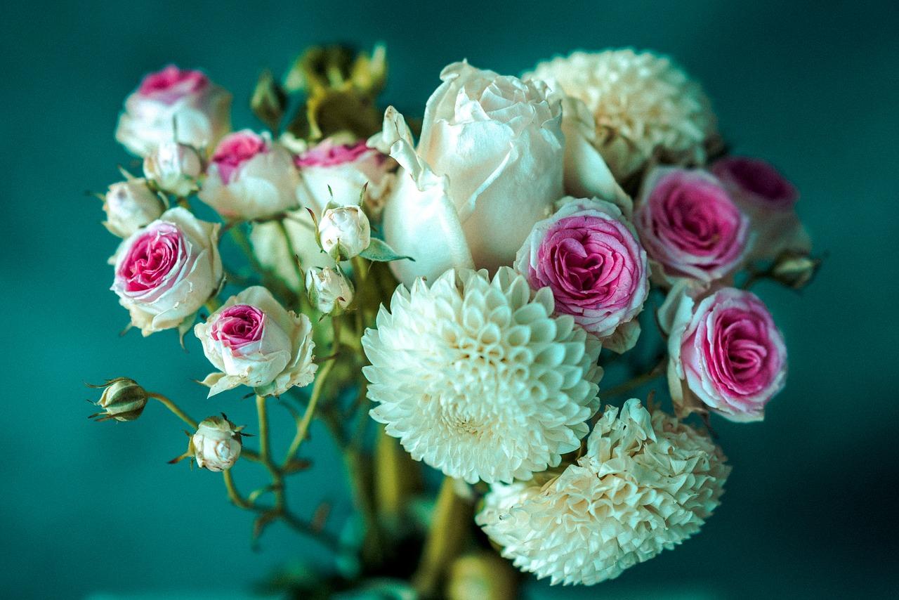 Fiori Del Mese Di Giugno crisantemi: non solo il fiore dei defunti - garden arcobaleno